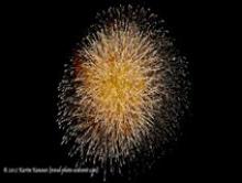 Fireworks at Disney Sea